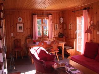 A hiker/skier's paradise in Switzerland - Saint-Luc vacation rentals