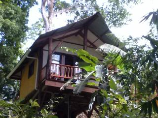 Nice House with Internet Access and Short Breaks Allowed - Bocas Town vacation rentals