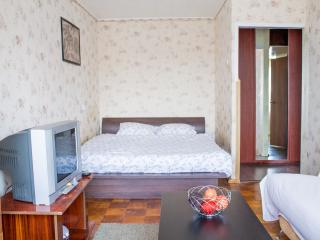 One bedroom with great city view - Nizhniy Novgorod vacation rentals