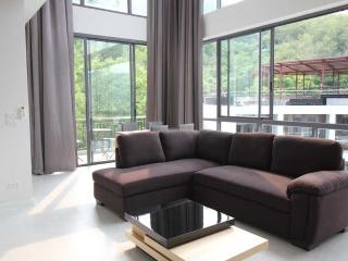 2 Bedroom Penthouse Apartment - Kamala vacation rentals