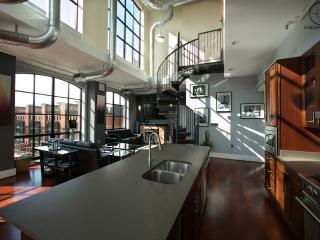 Penthouse W/Rooftop & Capitol View! - Arlington vacation rentals
