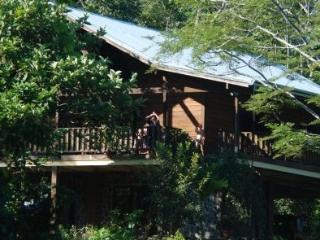 Mi Casa Su Casa Eco-Lodge - Dominical vacation rentals