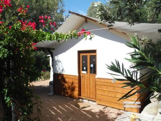 1 bedroom Yurt with Internet Access in Ventiseri - Ventiseri vacation rentals