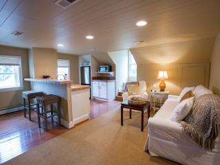 Little Washington Spa & Loft - Washington vacation rentals