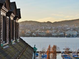 Central, tasteful, lake view: Zurich's best flat! - Zurich vacation rentals