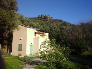 A CASA DI L'ALIVU Studio Castagnu - Patrimonio vacation rentals
