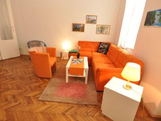 Apartment City / Universität/günstig/komfortable - Vienna vacation rentals