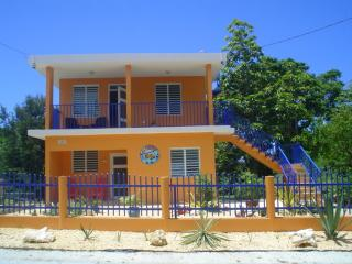 El Mamey lower House 15 min beach walking - Rincon vacation rentals