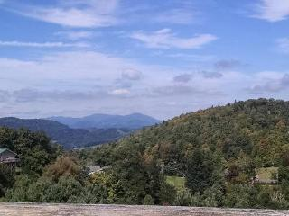 Perfect 3 bedroom Cottage in Boone with Deck - Boone vacation rentals