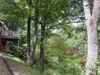 Perfect Cottage with Deck and Internet Access - Crumpler vacation rentals