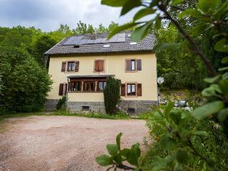 Cozy 2 bedroom Gite in Orbey - Orbey vacation rentals