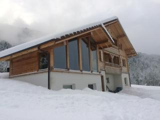 Modern Chalet near Annecy in the french alpes - Les Villards-sur-Thones vacation rentals