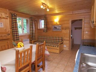 Bright 2 bedroom Condo in Chamonix with Internet Access - Chamonix vacation rentals