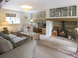 Nice Cottage with Internet Access and Central Heating - Cold Aston vacation rentals