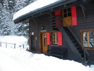 Chalet Sam Suphy Ski in/ski out in village centre - Morgins vacation rentals