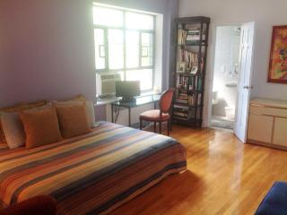 2 Private Bedrooms Avail Upscale Apt 15 min to NYC - Forest Hills vacation rentals