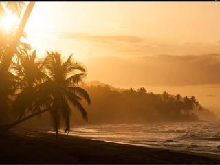 Luxury Oceanfront Condominium Suite - Best of LT - Las Terrenas vacation rentals
