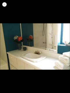 Modern apartment 20 mins from Miami beach - Coconut Grove vacation rentals