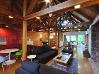 Perfect 3 bedroom Hakuba-mura Chalet with Internet Access - Hakuba-mura vacation rentals