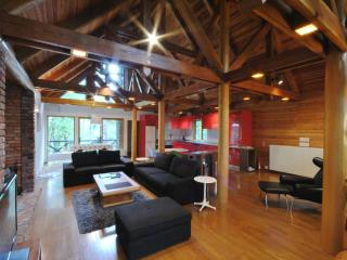 Perfect Chalet with Internet Access and Kettle - Hakuba-mura vacation rentals