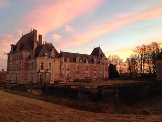 Château de Jalesnes 'Bibliothèque' - Saumur vacation rentals