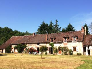Nice Farmhouse Barn with Deck and Outdoor Dining Area - Nogent-sur-Vernisson vacation rentals