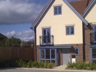 Perfect House with Internet Access and Parking - Lymington vacation rentals