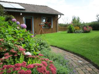 Nice House with Deck and Internet Access - Celle vacation rentals