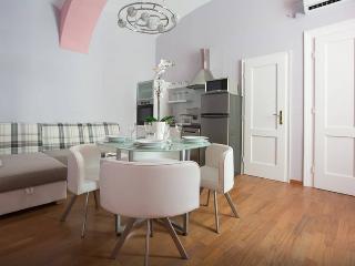 Luxury app in the centar of Zagreb - Zagreb vacation rentals