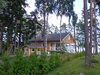 Perfect 2 bedroom Lodge in Salo - Salo vacation rentals
