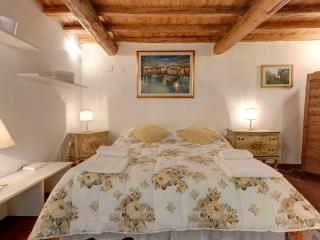 ancient studio apartment in Oltrarno area - Florence vacation rentals