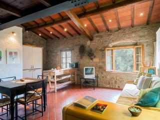 Leccino one-room flat - Casciana Terme vacation rentals