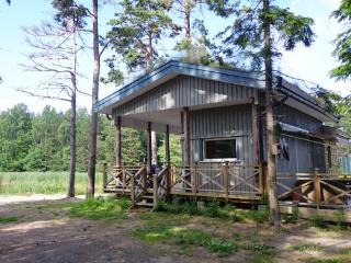 2 bedroom Lodge with Deck in Salo - Salo vacation rentals