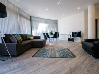 Tower BDG/Bermondsey Superior Apt - London vacation rentals
