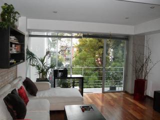 Amazing contemporary loft at the hip Condesa - Mexico City vacation rentals