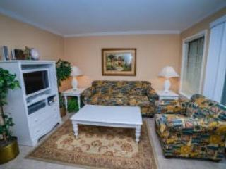 SNOWBIRD Feb and March avail at Myrtle Beach Resort- WOW!  Call us quick! - Image 1 - Myrtle Beach - rentals