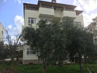 Olive Apart near Mediterranean sea Anamur Turkey - Anamur vacation rentals