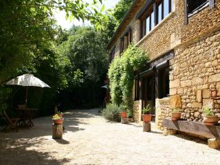 Nice Gite with Internet Access and A/C - Montignac vacation rentals