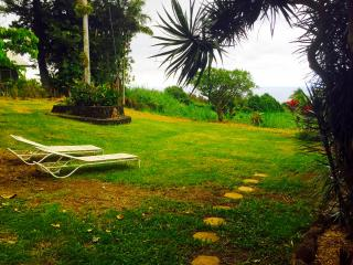 Serenity Studio with Ocean View - Honokaa vacation rentals