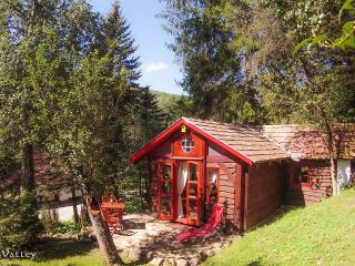 Nice Cottage with Internet Access and Wireless Internet - Bukkosd vacation rentals