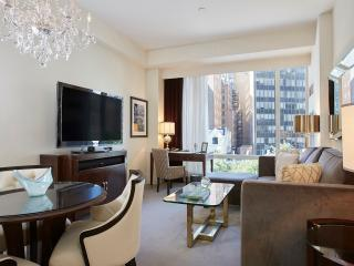 Modern Decor, 5-Star Hotel Amenities,  Steps From Central Park! - New York City vacation rentals