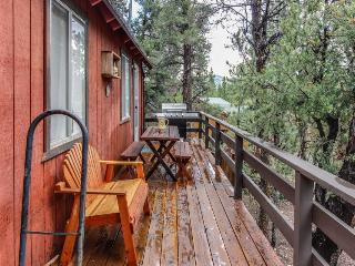 Cozy and secluded mountain home for 8, pet-friendly! - Big Bear City vacation rentals