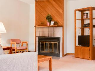 Dog-friendly w/ fireplace, private sauna, mountain views, minutes to the slopes! - West Dover vacation rentals