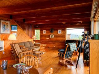Gorgeous, dog-friendly mountaintop water views with a private hot tub! - Port Angeles vacation rentals