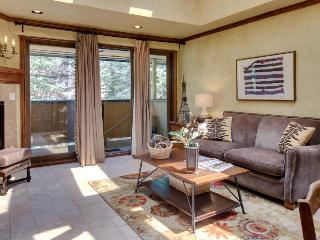 In the heart of Aspen! Walk to everything! - Aspen vacation rentals