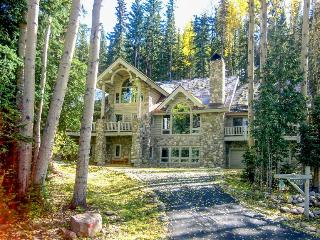 Secluded ski home with jukebox, pool table, and jetted tub - Mountain Village vacation rentals