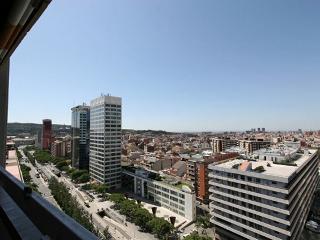Torre luxe Plaza España - Barcelona vacation rentals
