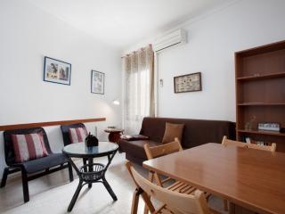TARRADELLAS_B, PARA 8 PERSONAS - Barcelona vacation rentals