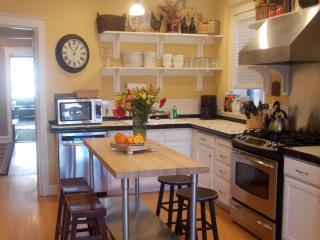 Stunning Old World Charm & Elegance! * HOT Winter Monthly Rate $99Nt  Unit N1 - Chicago vacation rentals