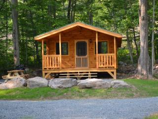 adorable little log cabin in the woods - Blakeslee vacation rentals